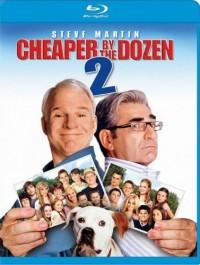 Dvanáct do tuctu 2 (Cheaper by the Dozen 2, 2005)