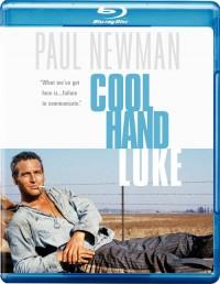 Frajer Luke (Cool Hand Luke, 1967)