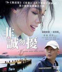 Fei Cheng Wu Rao (Fei Cheng Wu Rao / If You Are the One, 2008)