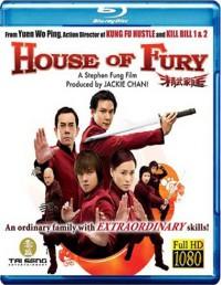 Zuřivost v srdci / Zuřivost v krvi (Jing mo gaa ting / House of Fury, 2005)