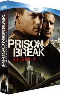 Útěk z vězení - 4. sezóna (Prison Break: Season Four, 2008)