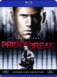 Útěk z vězení - 1. sezóna (Prison Break: Season One, 2005)