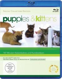 Puppies & Kittens (2009)