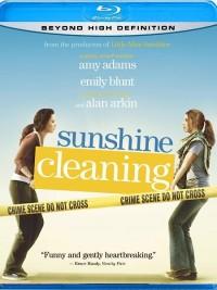 Jarní úklid s.r.o. (Sunshine Cleaning, 2008)