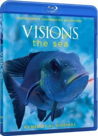 Visions of the Sea (2009)
