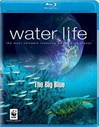 Water Life: The Big Blue (2009)