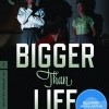 Bigger Than Life (1956)