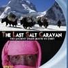 Last Salt Caravan, The (2010)