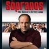 Rodina Sopránů - 1. sezóna (Sopranos, The: The Complete First Season, 1999)