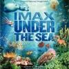 Podmořský svět (Under the Sea, 2009)