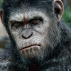 Rychlo TIP: Kolekce Planety opic ve slevě za 1500 Kč
