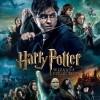 První pohled: Harry Potter ve sběratelské Wizard´s Collection