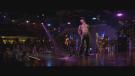 Blu-ray film Bez kalhot (Magic Mike, 2012)