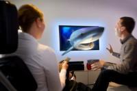 3D - žralok