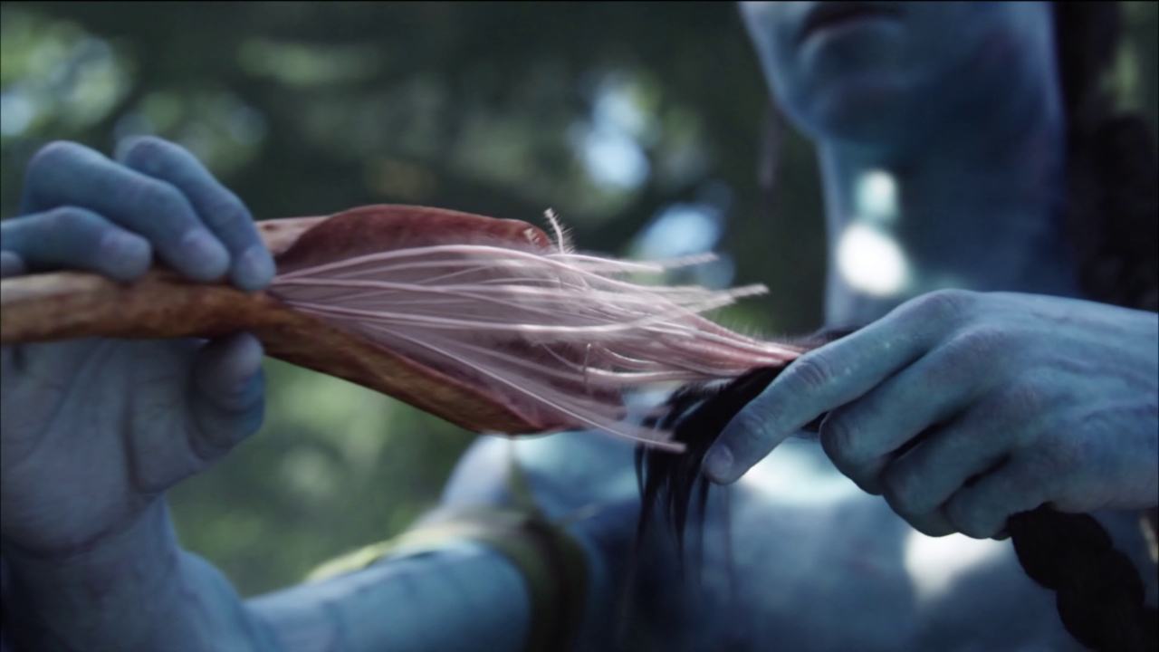 avatar extended 1080p download
