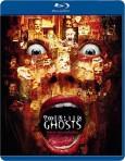 13 duchů (Thir13en Ghosts / Thirteen Ghosts / 13 Ghosts, 2001) (Blu-ray)