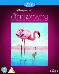 Crimson Wing, The: Mystery of the Flamingos (2008)