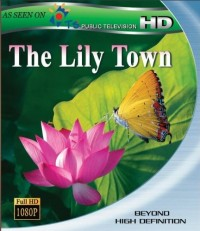 Lily Town, The (2010)