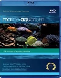 Marine Aquarium (2008)