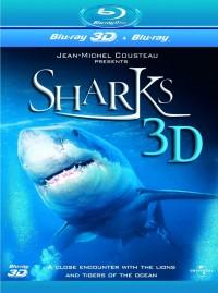 Žraloci 3D (Sharks 3D, 2004)