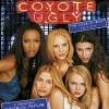 Divoké kočky (Coyote Ugly, 2000)