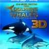 Delfíni a velryby 3D: tuláci oceánů (Dolphins and Whales 3D: Tribes of the Ocean, 2008)