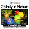 HD Moods: Chihuly in Nature (2009)