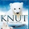 Knut und seine Freunde (Knut und seine Freunde / Knut & Friends, 2008)