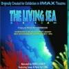 Living Sea, The (IMAX) (1995)
