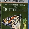 Nova: The Incredible Journey of the Butterflies (2009)