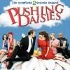 Pushing Daisies - 2. sezóna (Pushing Daisies: Season Twp, 2008)