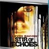 Ozvěny mrtvých (Stir of Echoes, 1999)