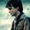 Harry Potter v jednatřicetidiskové edici