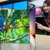 """Ultimátní televizor: LG chystá ohebný a průhledný 60"""" OLED s rozlišením 4k"""