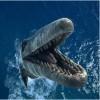 Vyhrajte 3D film na Blu-ray - Monstra oceánů