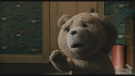 Blu-ray film Méďa (Ted, 2012)